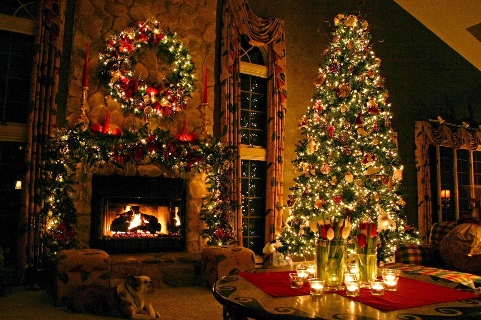Christmas Tree 2017 lights HD images