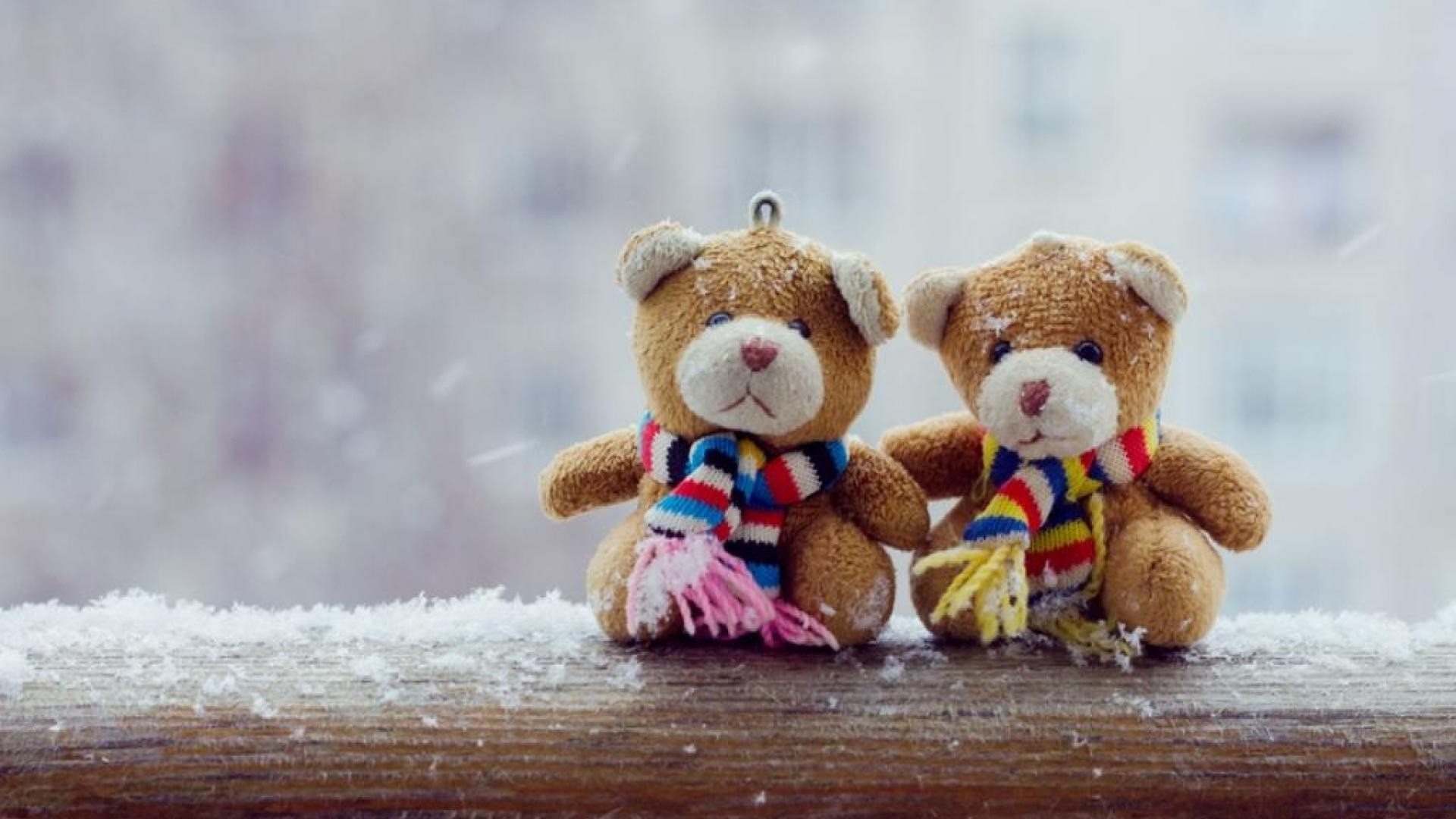 happy teddy bear day hd images love